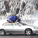 """""""Lexus Surprise"""" 1"""